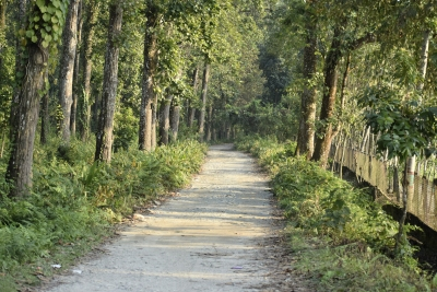 Gorumara-National-Park