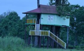 treehouse-dhupjhora
