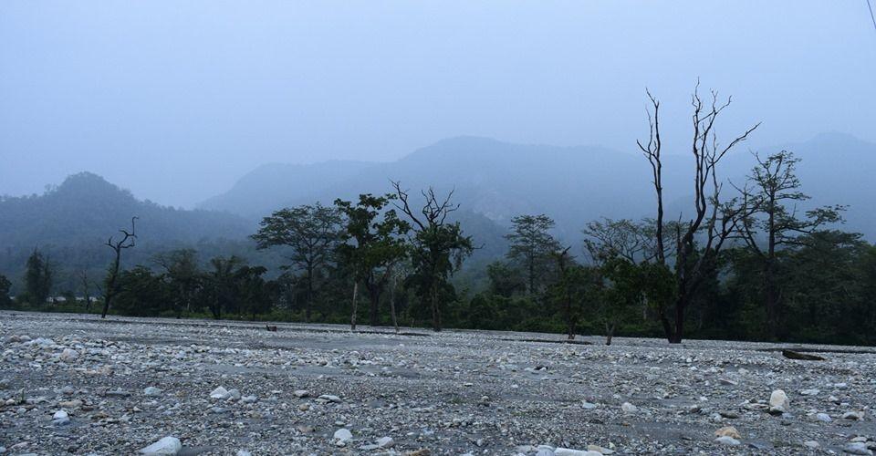jayanti-buxa-tiger-reserve