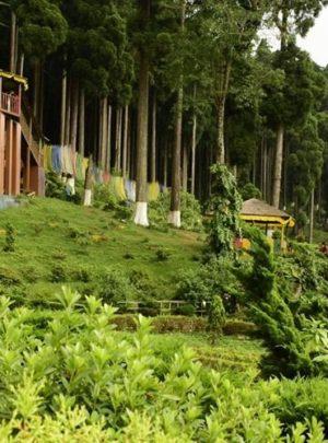 lamahatta-eco-park