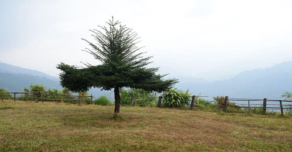 dalgaon-viewpoint