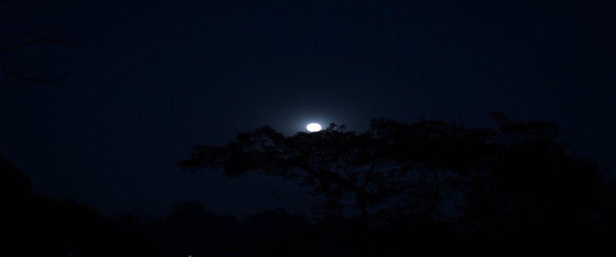 nightsky-tabakoshi