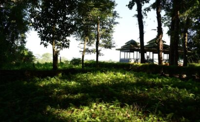 jatraprasadwatchtower-gorumara