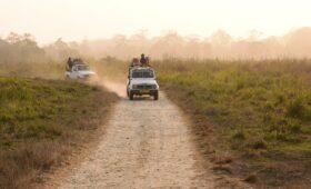 jaldapara-jungle-safari